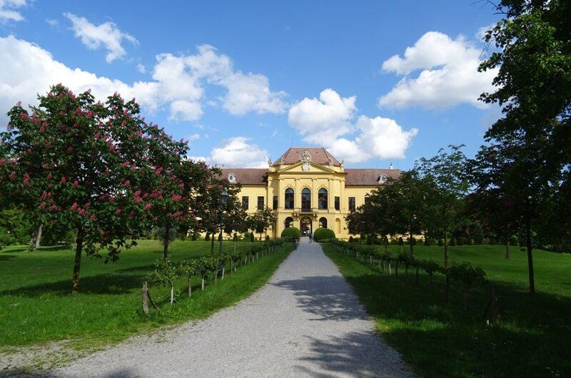 Allee vor Schloss Eckartsau