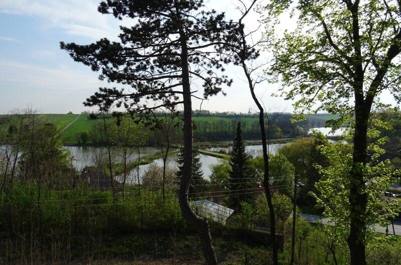 Nexinger Teichlandschaft