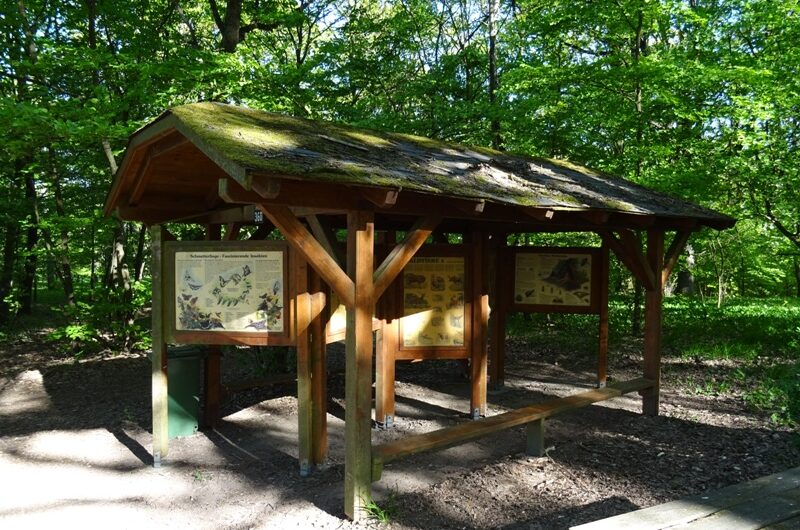 Waldlehrpfad Infotafeln am Glockenberg