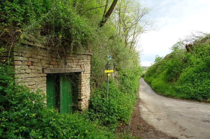 Kellergasse Wolfpassing