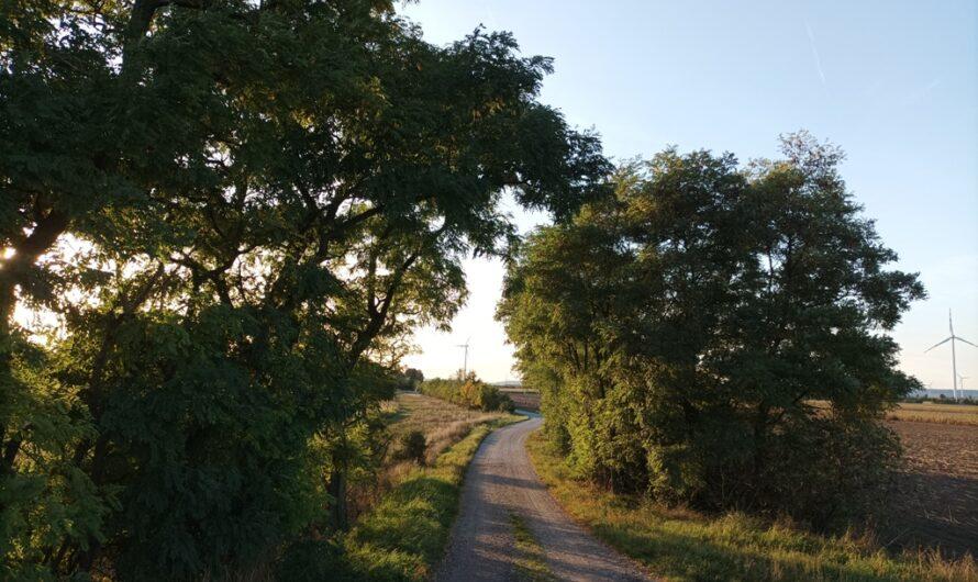 Am Rußbach bei Helmahof